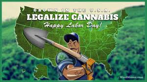 Labor Day Meme - happy labor day pot farmer weed memes weed memes