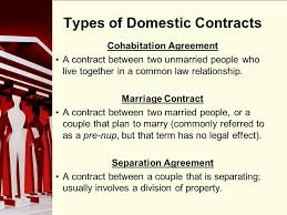 90 division of property and support 90 family propertycohabitation