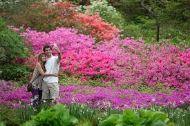 New York Botanical Garden Directions New York Botanical Garden New York Attractions Review 10best