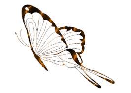 playpen of graphics cubit playpen of graphics butterflies