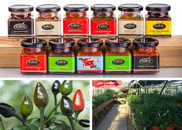 18 best edible ornamentals on the artisan food trail images on