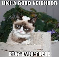 Grumpy Cat Photo 1 Best - 32 funny angry cat memes for any occasion freemake
