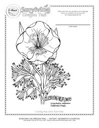california poppy flower free printable coloring page