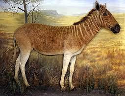 Animales Extintos Images?q=tbn:ANd9GcS88EeDQ2HL9QXJWdGwxoqChLtE9oVrHVXVmM8efMA1IYmUo6S7Bw