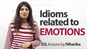 idioms related to emotions free lesson