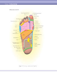 Foot Reflexology Map Reflexology Natural Life Integrated Health Care Solutions