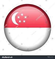 Singapore Flag Icon Vector Flag Button Series Singapore Stock Vector 117074935