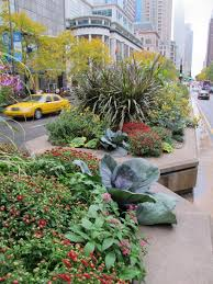 landscaping tips from top designers diy network blog made