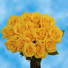 cheapest flowers bulk special roses global