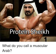 Arabs Meme - protein sheikh what do you call a muscular arab meme on me me