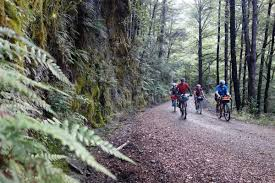 The New Zealand Cycle Trail Official Website Tour Aotearoa 2016 New Zealand Bikepacking Com
