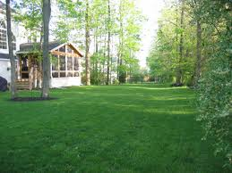 Pinterest Backyard Landscaping by Backyard Ideas Here Are Some Ideas Of Where You Can Use Windy