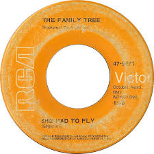 45cat the family tree she had to fly he spins around rca