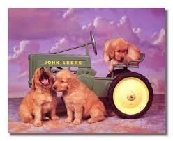 amazon puppy dog john deere fram tractor kids room animal