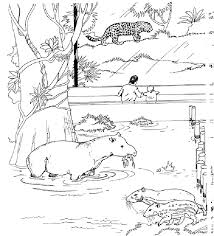 printable zoo animal coloring pages printable zoo animals coloring home