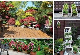 Patio Container Garden Ideas Awesome Patio Pot Plants Ideas 13 Container Gardening Ideas Potted