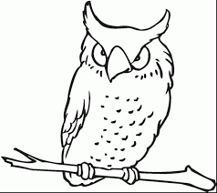 astonishing owl doodle art coloring pages with cute owl coloring