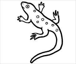 22 lizard templates crafts u0026 colouring pages free u0026 premium