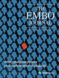about the cover u2014 december 15 2017 36 24 the embo journal