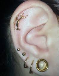 best earrings for cartilage 8 best piercings jewelry images on anti eyebrow