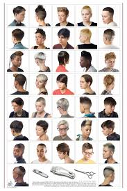 names of different haircuts names for haircuts different types of mens haircuts vector
