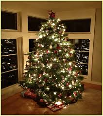 led indoor christmas tree lights home design ideas
