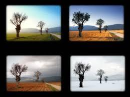 external image images?q=tbn:ANd9GcS8A4KO_HDG_HZsXQnq9T1T2Vj-nDFlTznyCZ3cQduTiQ0W4gy0NQ