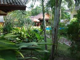 luxury bungalow 2 bedrooms pool jacuzzi 5 min beach breakfast