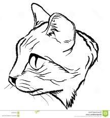 simple cat face drawing cat face illustration cat face draw design