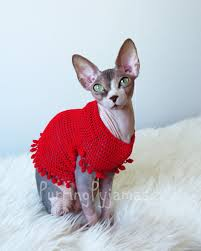 sweaters for cats cat sweater sphynx sweater cat clothes sphynx clothes