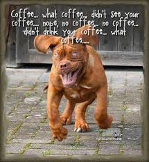 Friday Coffee Meme - friday frivolity hilarious dog memes plus free and fun linky