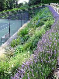 Backyard Tennis Courts Best 25 Backyard Tennis Court Ideas On Pinterest Tennis Courts
