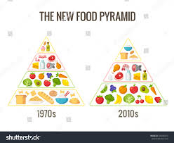 healthy diet infographics classic food pyramid stock vector