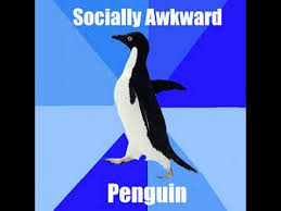 Peguin Meme - socially awkward penguin meme youtube