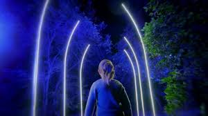 enchanted forest of light tickets filming an enchanted forest of light granbery studios blog and