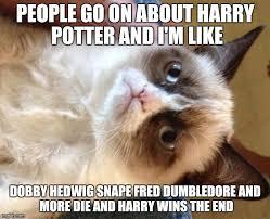 Cat Meme Maker - grumpy cat meme imgflip