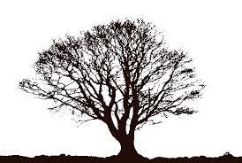 black tree free clip free clip on clipart