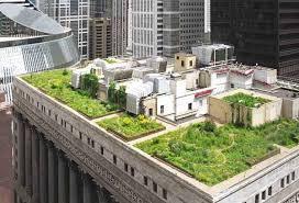come realizzare un giardino pensile costruire un giardino sul tetto