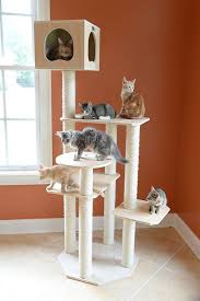 Cat Trees For Big Cats Cat Tree Plans For Large Cats Diy Cat Tree Plans