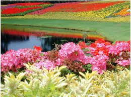 colorful flower gardens صور اروع حداق الورود