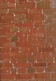 vermeer u0027s palette red ochre