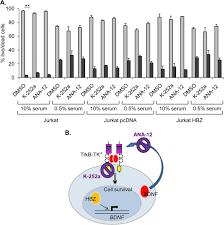 hbz stimulates brain derived neurotrophic factor trkb autocrine