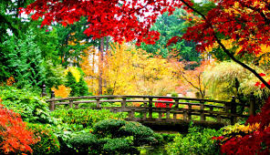 japanese nature wallpapers wallpapersafari