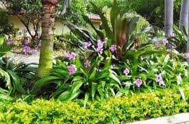 Tropical Gardening Ideas Gorgeous Tropical Landscaping Ideas 1000 Images About Caribbean