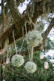 baby s breath ceremony decor hanging from tree pink