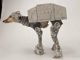 Martha Stewart Dog Halloween Costumes Martha Stewart Batwings Dog Costumes Star Wars U0027
