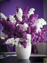 online get cheap lavender bag kits aliexpress com alibaba group