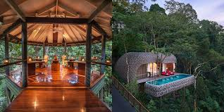 three house treehouse hotels treehouses you can actually stay in