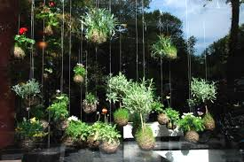 New Garden Ideas New Gardening Suggestions For Decor Advisor