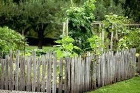 Ideas For Fencing In A Garden Diy Garden Fence Cheap Garden Fence Ideas Cheap Fence Ideas Diy